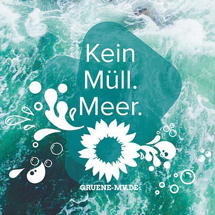 Kein Müll. Meer. gruene-mv.de